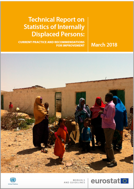 Technical Report on Statistics of Internally Displaced Persons (2018)