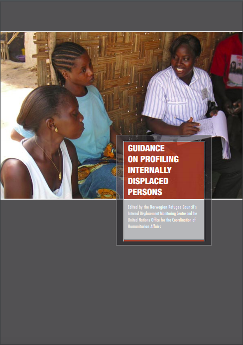 Guidance on Profiling Internally Displaced Persons (2008)