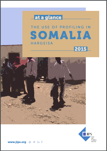 Profile At a Glance: The Use of Profiling in Somalia (Hargeisa, 2015)