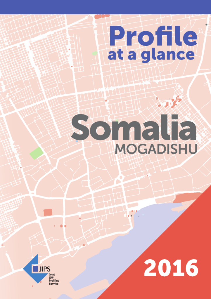 Profile At a Glance: The Use of Profiling in Somalia (Mogadishu, 2016)