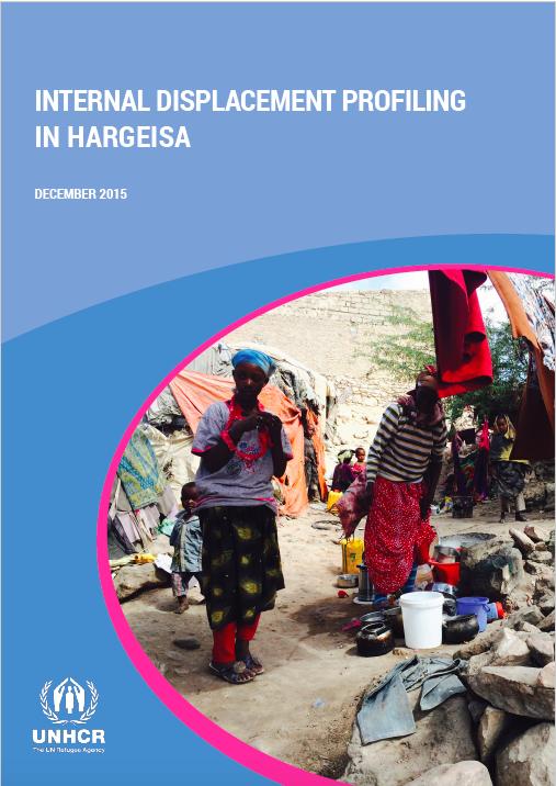 Internal Displacement Profiling in Hargeisa (Somalia, 2015)