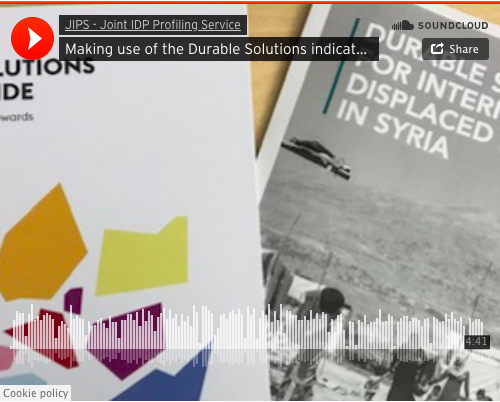 Making use of the Durable Solutions Indicator Library: experiences from Syria
