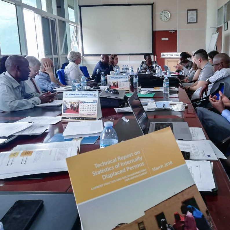 EGRIS IDP Subgroup: Meeting in Kampala on International Recommendations on IDP Statistics