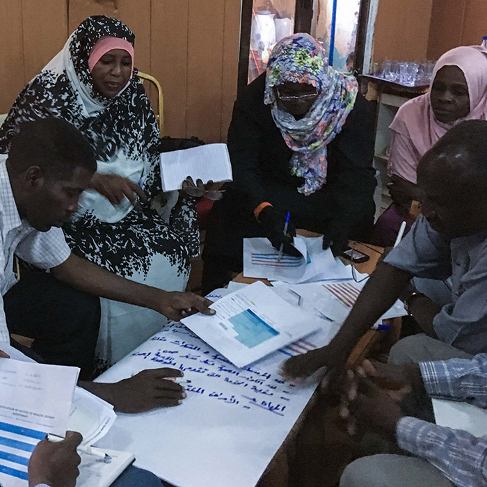 Engaging Stakeholders in Joint Analysis in Darfur | Mission to Sudan in Nov 2018