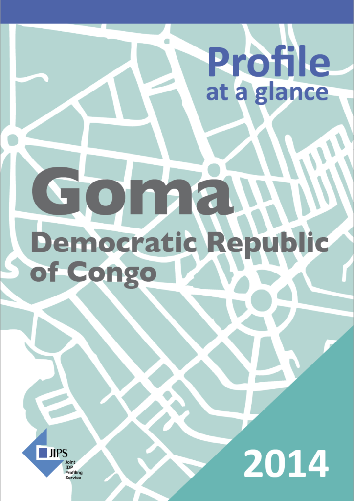 Profile at a Glance: The Use of Profiling in the Democratic Republic of Congo (Goma, 2014)