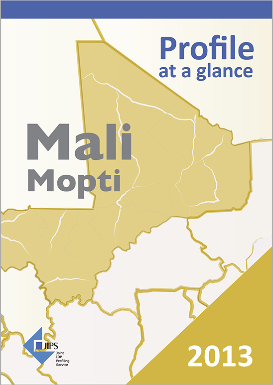 Profile at a Glance: The Use of Profiling in Mali (2013)