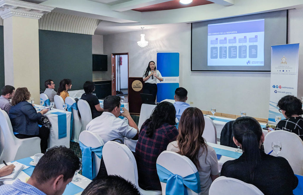 Behind the Scenes: Honduras' Inter-Institutional Commission on IDPs & Where the Profiling Exercise Comes in (Apr 2019)