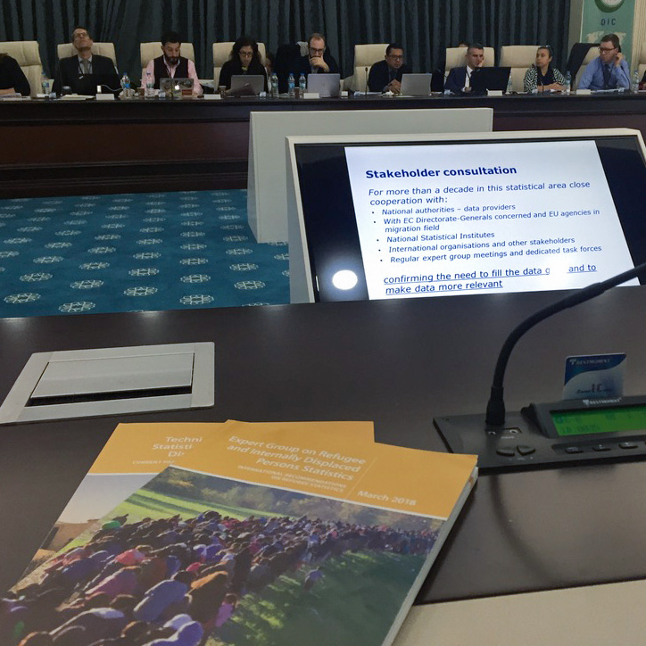 International Recommendations on IDP Statistics Becoming Real: Update on EGRIS