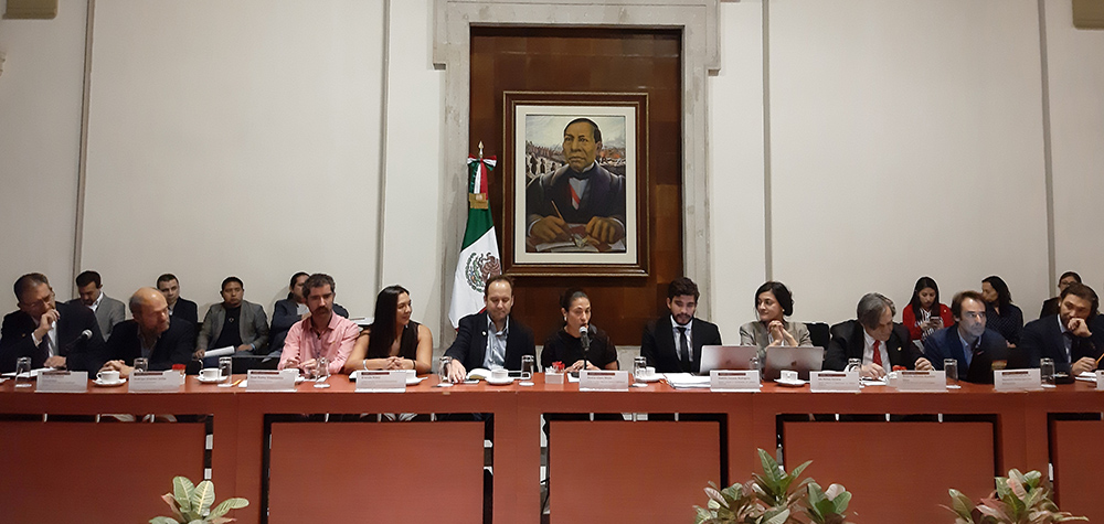 JIPS' Support in Mexico on Capacity Building for Improved Displacement Data (Nov 2019)