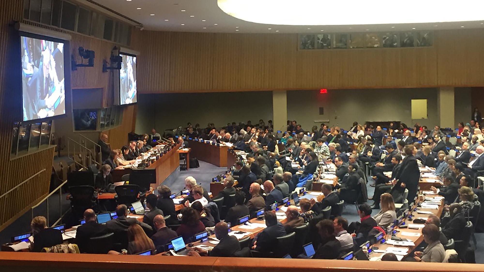 JIPS-UNSC51-Mar2020-plenary