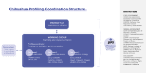 Organisational illustration
