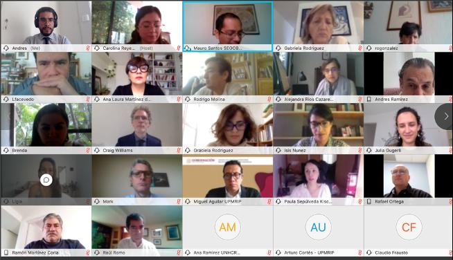 Screenshot of the online meeting