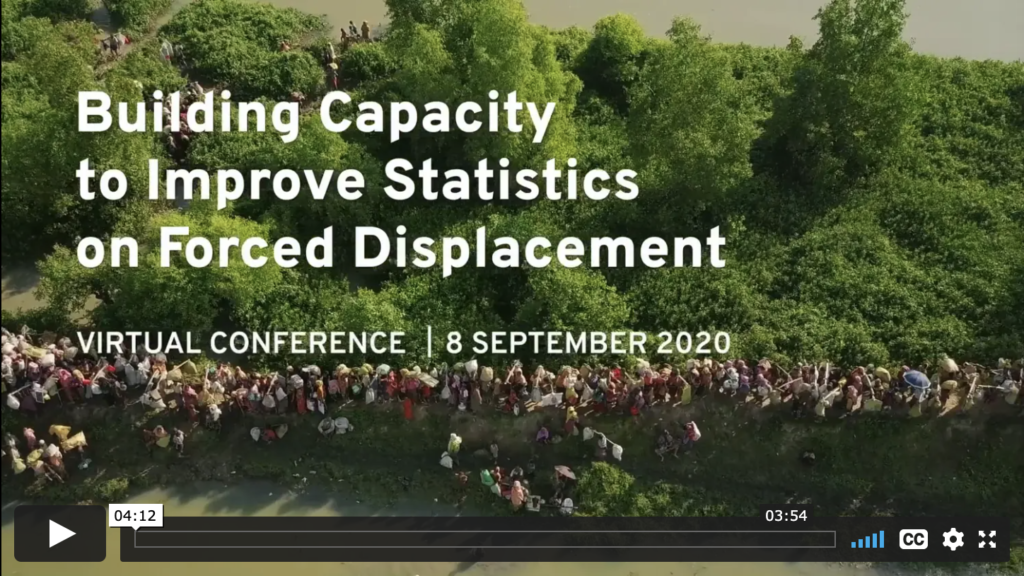 JIPS-EGRIS Virtual Conference 2020 | Building Capacity for Improved Displacement Statistics