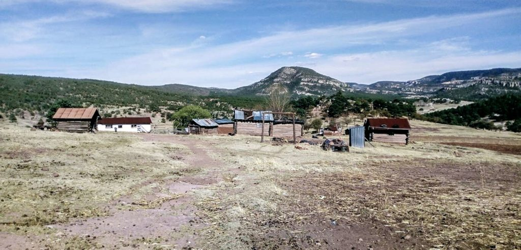 Joining Efforts to Respond to Internal Displacement in Chihuahua, Mexico