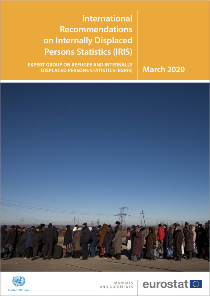 International Recommendations on Internally Displaced Persons Statistics (IRIS; EGRIS, 2020)