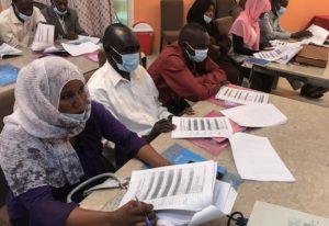Enumerator training session in El Fasher (Sudan)