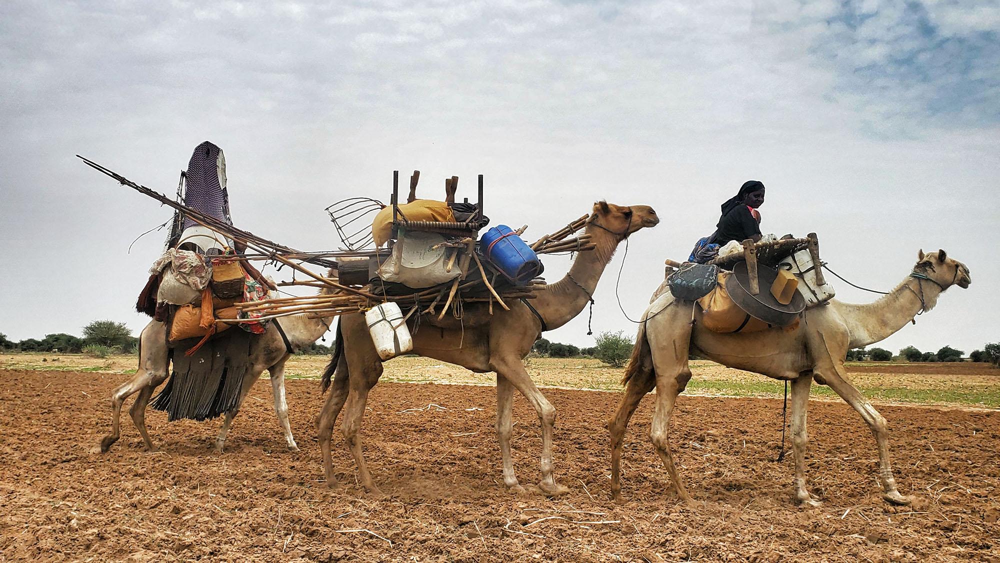 Sudan-Nertiti-Credit-UNHCR-SaimaHassan